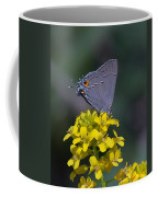 Gray Hairstreak Butterfly Din044 Coffee Mug