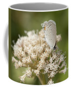 Gray Hairstreak Butterfly On Milkweed Wildflowers Coffee Mug