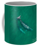 Gray Whale Mother And One-year-old Calf Coffee Mug