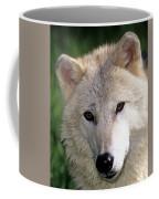 Gray Wolf Face Coffee Mug