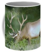 Grazing Bull Elk  Coffee Mug
