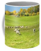 Grazing Sheep On Farm In Autumn Maine Coffee Mug