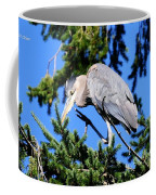 Great Blue Heron Concentration Coffee Mug