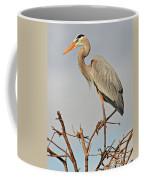 Great Blue Heron In Habitat Coffee Mug