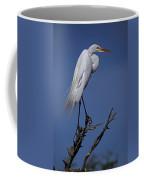 Great Egret, Casmerodius Albus, Perched Coffee Mug