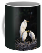 Great Egret In Nest With Young Coffee Mug
