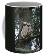 Great Horned Owls Young Coffee Mug