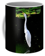 Great White Egret Singing In The Morning Light Coffee Mug