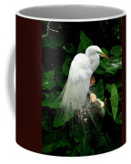 Great White Egret With Breeding Plumage Coffee Mug
