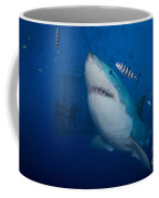 Great White Shark And Pilot Fish Coffee Mug