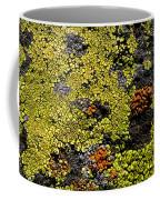 Green Algea Coffee Mug