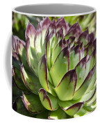 Green And Red Succulent Coffee Mug