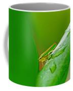 Green And Yellow Bug Coffee Mug