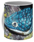 Green Arboreal Alligator Lizard Coffee Mug