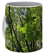 Green Canopy Coffee Mug
