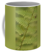 Green Ferns Blend Together Coffee Mug by Heather Perry