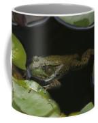 Green Frog And Lily Pads 9613 Coffee Mug