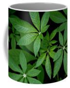 Green Is Beautiful Coffee Mug