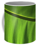 Green Leaf, Close-up Coffee Mug
