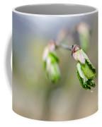 Green Leaf In Spring Coffee Mug