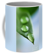 Green Leaf With Water Drops Coffee Mug
