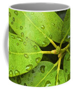 Green Leaves With Water Droplets Coffee Mug
