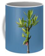 Green Lizard In Love Coffee Mug