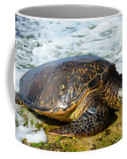 Green Sea Turtle Of Hawaii Coffee Mug