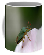 Green Shieldbug Coffee Mug