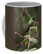 Green Tailed Trainbearer Coffee Mug