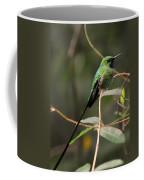 Green Tailed Trainbearer Hummingbird Stylized Coffee Mug