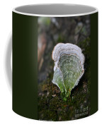 Green Turkey Tails Coffee Mug