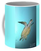 Green Turtle Swimming, Sabah, Malaysia Coffee Mug