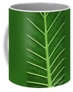 Green Veiny Leaf 1 Coffee Mug