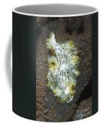 Green, White And Brown Flatworm, Bali Coffee Mug