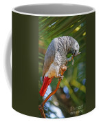 Grey Parrot Coffee Mug