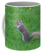 Grey Squirrel In The Rain Coffee Mug