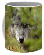 Grey Wolf, Outside Golden, British Coffee Mug