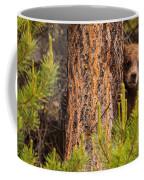 Grizzly Bear Cub Up A Tree, Yukon Coffee Mug