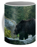 Grizzly Bear Or Brown Bear Coffee Mug