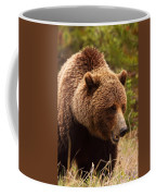 Grizzly Bear, Yukon Coffee Mug