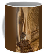 Ground Squirrel At Monument Valley Coffee Mug
