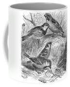Group Of Sparrows Coffee Mug