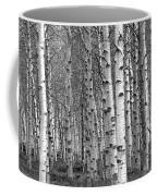 Grove Of Birch Trees Coffee Mug