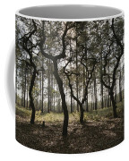 Grove Of Trees In The Ocala National Coffee Mug