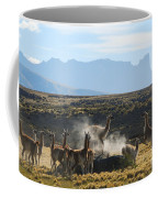 Guanacos In Action Coffee Mug