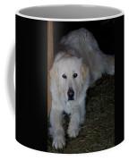 Guarding The Barn Coffee Mug