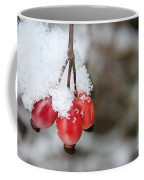 Guelder Rose In The Snow Coffee Mug