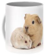 Guinea Pig And Hamster Coffee Mug