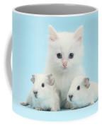 Guinea Pigs And Maine Coon-cross Kitten Coffee Mug